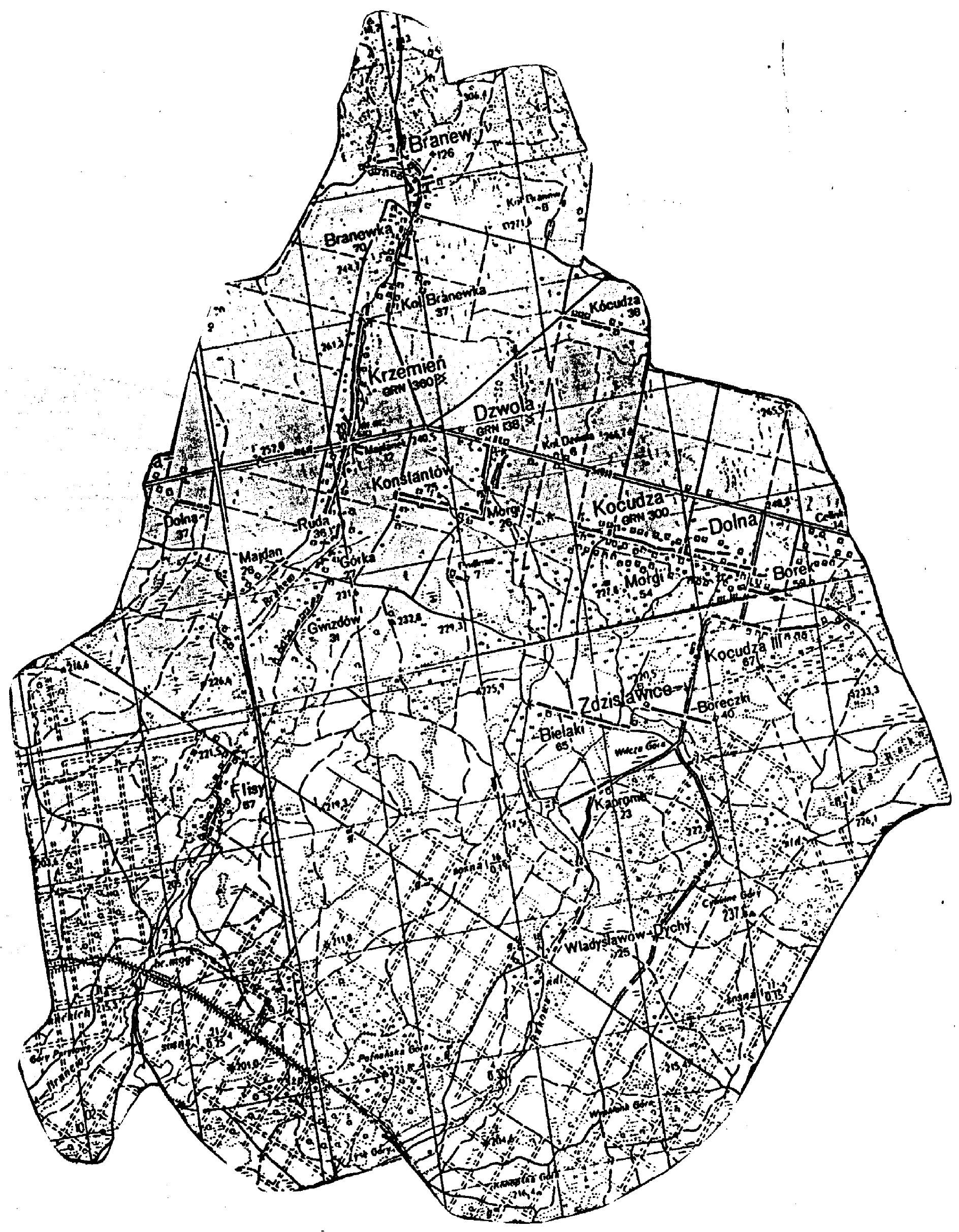 mapa gminy dzwola-1