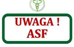 Więcej o: ASF – informacja