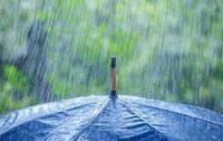 Więcej o: Przyjmowanie wniosków ooszacowanie szkód wzwiązku zwystąpieniem niekorzystnych zjawisk atmosferycznych