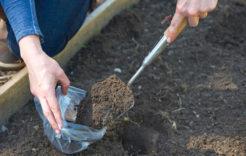 Więcej o: Próbki gleby – dowtorku 10.09.2019 r.