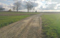 Więcej o: Utwardzenie drogi transportu rolniczego (wygon skośny)